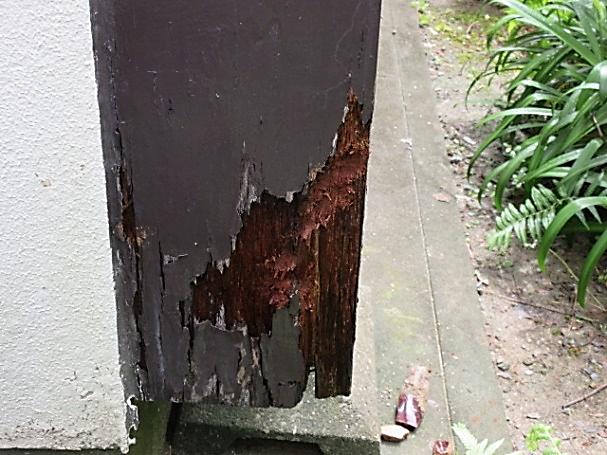 写真:戸袋の腐食